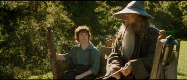 film 39 the lord of the rings the fellowship of the ring leaves