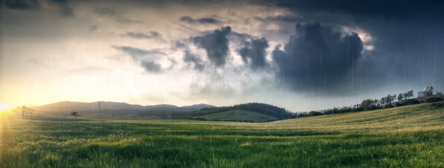 nature-field-meadow-grass-hills-rain-clouds