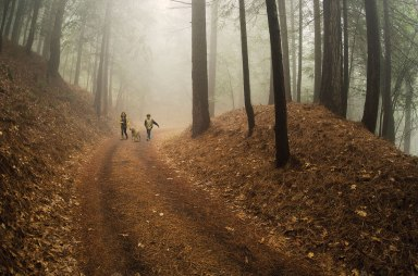 0114_web_feature_kids_in_woods_17227277_1205x800x