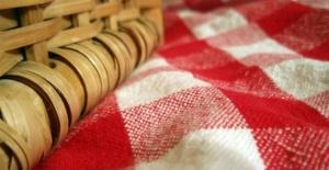 picnic-blanket_f[1]